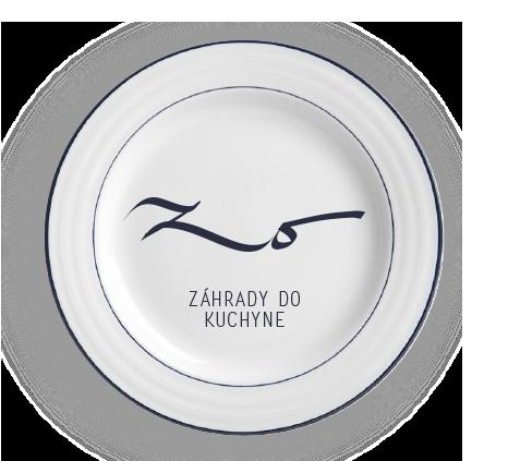 ZO-prezi-150125-5