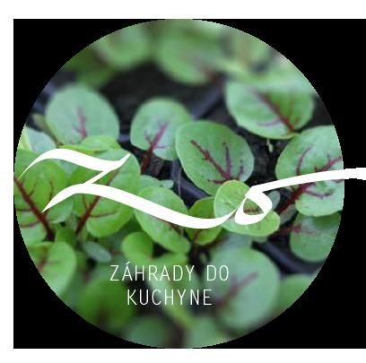 ZO-prezi-150125-6